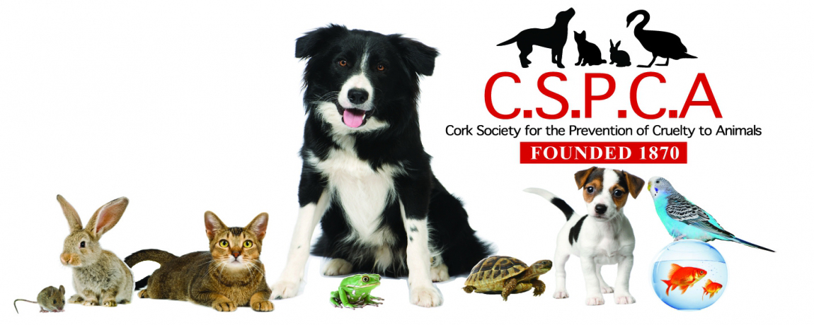 Cork Society for the Prevention of Cruelty to Animals